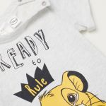 Lion King Pictures to Print Creative T Shirt with Printed Motif Light Gray Lion King Kids
