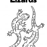Lizard Color Pages New Gecko Coloring Pages