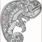 Mandala Coloring Pages Printable Amazing Coloring Free Printable Mandala Coloring Pages Elegant Best Easy
