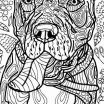 Mandala Coloring Pages to Print Amazing Free Coloring Pages for Dogs Lovely Printable Mandala Coloring Pages