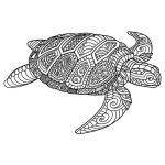 Mandella Coloring Pages Inspiration Image Result for Free Mandala Coloring Page with A Lizard or