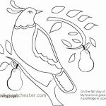 Mickey Mouse Printable Coloring Pages Fresh Free Disney Christmas Coloring Pages Unique Christmas Adult Coloring