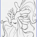 Mlp Coloring Books Inspiration 16 My Little Pony Coloring Book