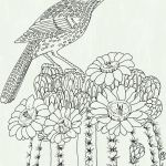 Moana Adult Coloring Book Inspirational Inspirational Hummingbird Coloring Pages Fvgiment
