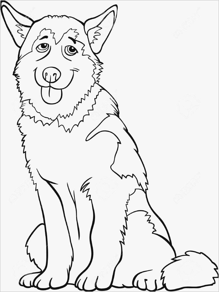 Native American Coloring Books for Adults Exclusive Awesome Native American Animals Coloring Pages – Howtobeaweso