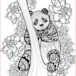 New Year Coloring Sheets Best Of Coloring Pages Horses Coloring Pages Horses Coloring Pages