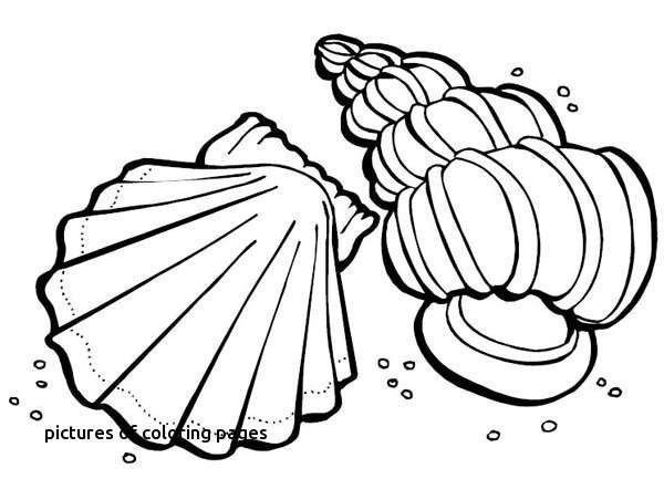 Nhl Coloring Book Elegant Free Hockey Coloring Pages Inspirational 52 Elegant Family Coloring