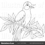 Oriole Coloring Page Best Baltimore orioles Coloring Pages Baltimore orioles Logo Coloring