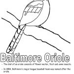Oriole Coloring Page Best Maryland State Map Coloring Pages Best Us Map Coloring Page