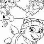 Paw Patrol Activity Sheets Fresh New Paw Patrol Printable Coloring Pages