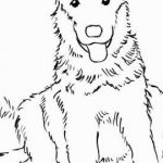 Paw Patrol Color Beautiful Free Paw Patrol Coloring Pages Elegant Childrens Free Coloring Pages