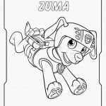 Paw Patrol Color Pages Inspiration Paw Patrol Coloring Pages soort 16 Coloring Pages Paw Patrol Kanta