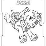 Paw Patrol Coloring Books Fresh 25 Best Paw Patrol Images In 2017
