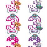 Paw Patrol Names and Pictures Amazing Paw Patrol Personalized Paw Patrol Number 3 Centerpieces Name