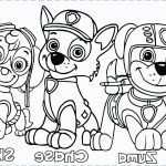 Paw Patrol Pages Best Of 10 Awesome Coloring Pages Zuma From Paw Patrol androsshipping