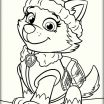Paw Patrol Pics to Color Amazing Paw Patrol Everest Coloring Pages Coloring Pages