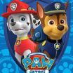 """Paw Patrol Pictures Of Chase Best Of Nickelodeon Paw Patrol Plush Blanket New 46""""x60"""" Great Gift Chase"""