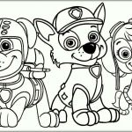 Paw Patrol Pictures Of Rocky Awesome Best Paw Patrol Rocky Coloring Pages – Howtobeaweso