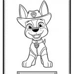 Paw Patrol Pictures Of Rocky Creative Awesome Paw Patrol Zuma Coloring Page – Fym
