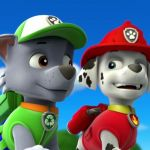 Paw Patrol Pictures Of Rocky Creative Pups Save Alex Gallery Paw Patrol Wiki