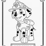 Paw Patrol Pictures Of Rocky Exclusive Paw Patrol Rocky Samples Rocky From Paw Patrol Coloring Page