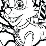 Paw Patrol Pictures Of Rocky Wonderful 75 Free Printable Paw Patrol Coloring Pages Aias