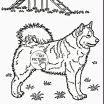 Paw Patrol Pictures Of Skye Amazing Fresh Free Coloring Pages Paw Patrol