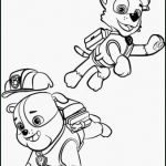 Paw Patrol Pictures to Print Marvelous Paw Patrol Coloring Pages soort 16 Coloring Pages Paw Patrol Kanta