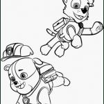 Paw Patrol Print Outs Inspired Paw Patrol Coloring Pages soort 16 Coloring Pages Paw Patrol Kanta