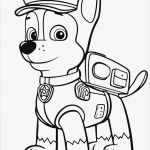 Paw Patrol Printable Badges Best Of Best Paw Patrol Coloring Page Fvgiment