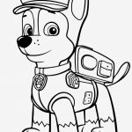 Paw Patrol Printable Pictures Inspirational Paw Patrol Coloring Pages Fresh Paw Patrol Coloring Pages Printable