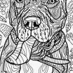Pdf Coloring Pages for Adults New Free Coloring Pages Pdf format New Printable Animal Coloring Pages