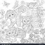 Pengiun Coloring Page Marvelous Tanager Coloring Pages