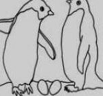 Pengiun Coloring Page Wonderful 15 Fresh Penguin Coloring Pages Kanta