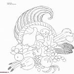 Penguin Coloring Book Marvelous Beautiful Rhino Coloring Page 2019