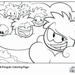Penguin Pictures to Print Exclusive Coloring Page Penguin
