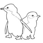 Penguin Pictures to Print Exclusive Two Little Blue Penguins Coloring Page