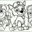 Pictures Of Skye From Paw Patrol Fresh Unique Paw Patrol Skye Coloring Page – Doiteasy