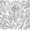 Pictures to Print and Color for Adults Beautiful 17 New Feather Coloring Page