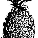 Pineapple Coloring Book Exclusive Pineapple Black White Line Art Coloring Pineapple