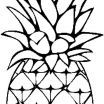 Pineapple Coloring Book Pretty Pineapple Clip Art Panda Floral Coloring Books