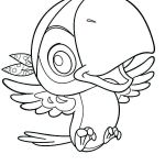 Pirate Coloring Books Inspired Best Parrot Fish Coloring Pages – Nocn