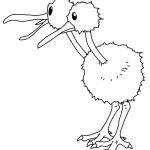 Pokemon Coloring Pages for Kids Excellent Ostrich Coloring Pages