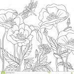 Poppy Colouring Sheets Awesome Adult Coloring Books Flowers Best Zentangle Stylized Dragonfly