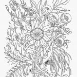 Poppy Colouring Sheets Elegant Coloring Pages Flowers for Teens Paper Crafts