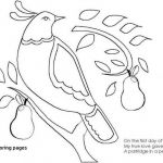 Princess Coloring Paper Inspiration Most Likely Disney Infinity Coloring Pages Plus Disney Coloring