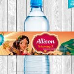 Princess Elena Of Avalor Pictures Inspired Princess Elena Of Avalor Water Bottle Label Instant Download