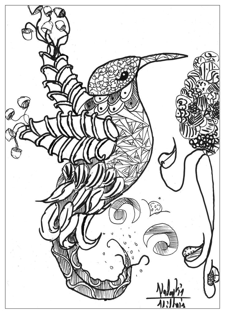 Print Adult Coloring Pages Excellent Coloring Animal Coloring Pages for Adults to Print Coloring Pages