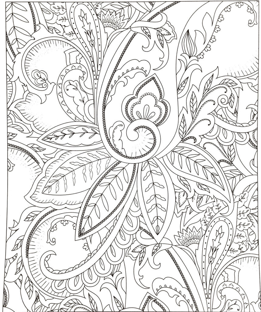 Printable Adult Coloring Pages Pdf Amazing Dolphin Coloring Pages New Free Printable Dolphin Adult Coloring