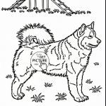 Printable Color Pages Exclusive Dog Drawing to Color Dog Coloring Sheets Print Color Pages Design